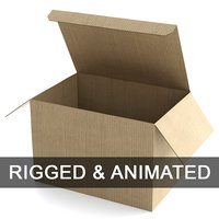 Cardboard Box 195x285cm - Rigged and Animated