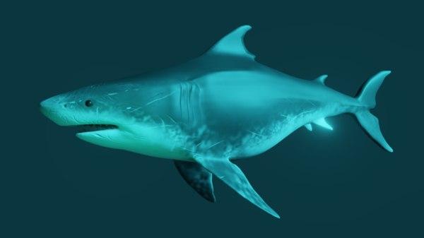 3D shark stylized model