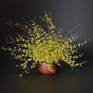 bouquet yellow flowers forsythia 3D model
