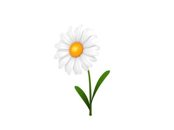 3D daisy cartoon model