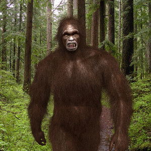 big foot - sasquatch 3D model