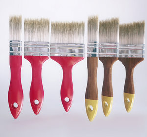 3D brushes paint walls model