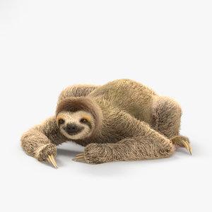 toed sloth three-toed 3D