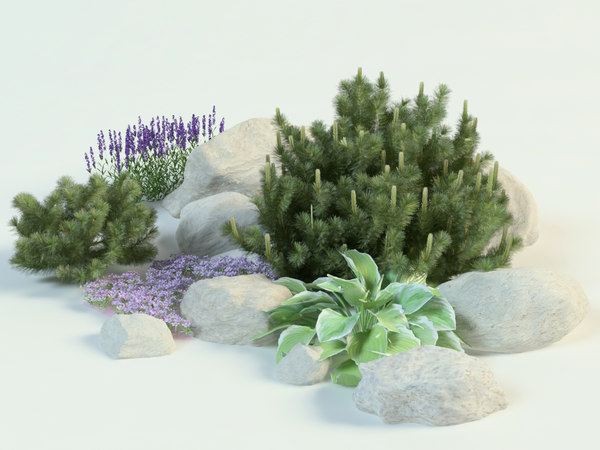 3D composition pine lavender hosta