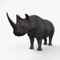 rhinoceros black model