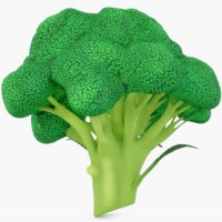 3D broccoli vegetable