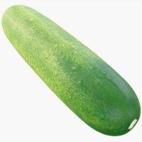cucumber subdivision 3D model