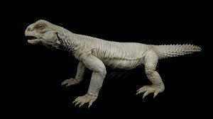 uromastyx lizard 3D