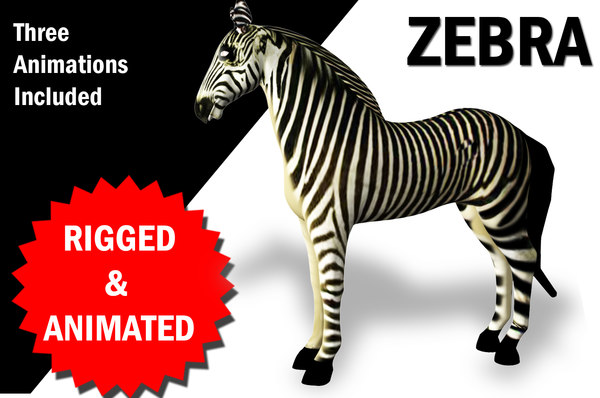 3D rigged zebra animations