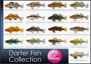 3d darter fish model