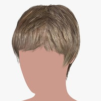 hairstyle 16 hair 3D model
