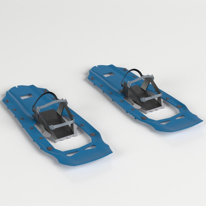 3D modern snow shoes