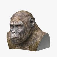 ape head 3D model