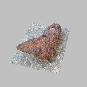 3D poop poo dog