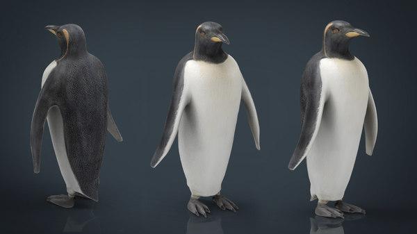 penguin animal 3D model