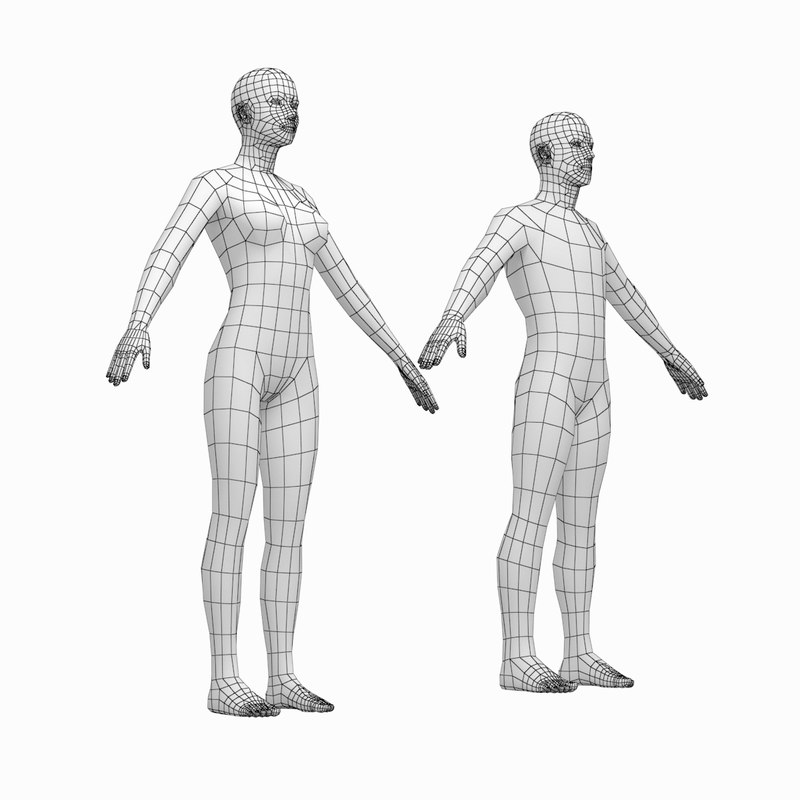 human female male bodies model