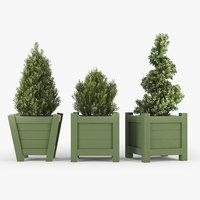 3D buxus green pot model