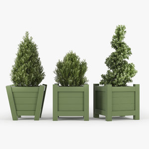 3D buxus green pot model