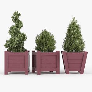 plant flora bush 3D model