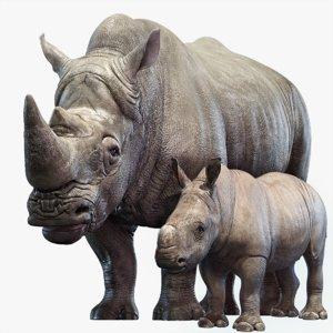 rhino family 3D