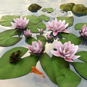 frog fish stones model