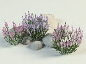 3D ling stones landscape model