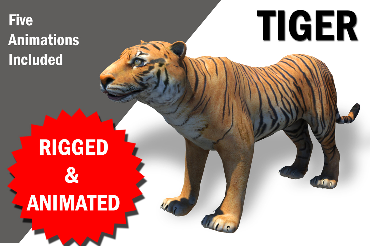 bengol tiger rigged animations 3D model