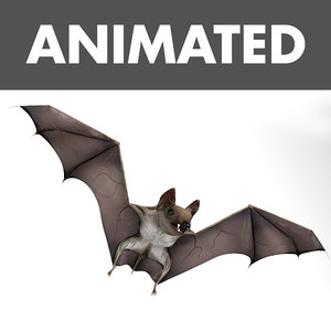 bat cloth wings 3D model