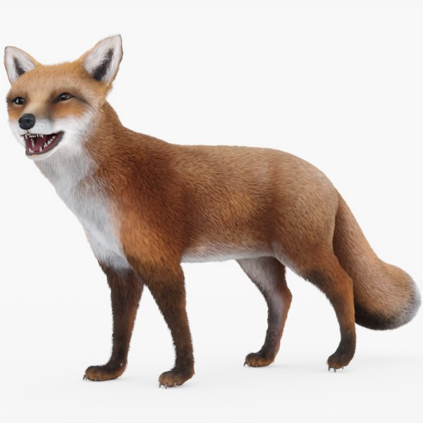 fox fur included 3D