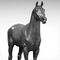 sport horse v2 3D model