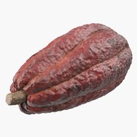 3D brown cocoa fruit