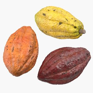 cocoa fruit set 3D