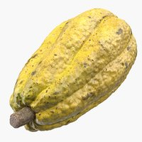yellow cocoa fruit 3D model