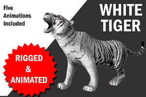 white tiger animation walk 3D model