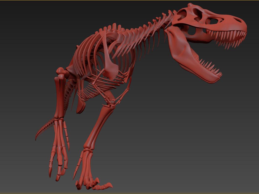 3D skeleton tyrannosaur animation