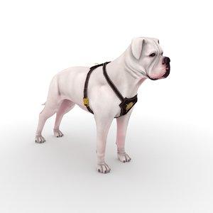 3D american bulldog harness