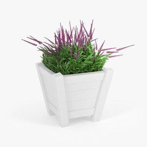 nature flora 3D model