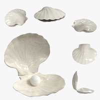 decor sea shell with pearl(1)