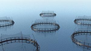 fishing farm open net model