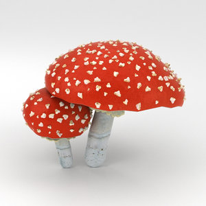 3D amanita nature mushroom