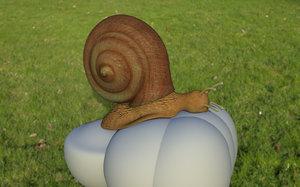 animals snail 3D model