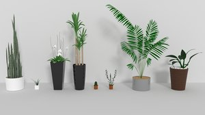 indoor plants 3D