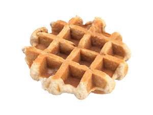 3D model photorealistic scanned waffle