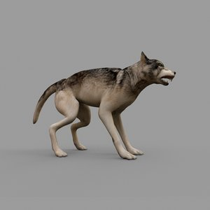 3D wolf rig