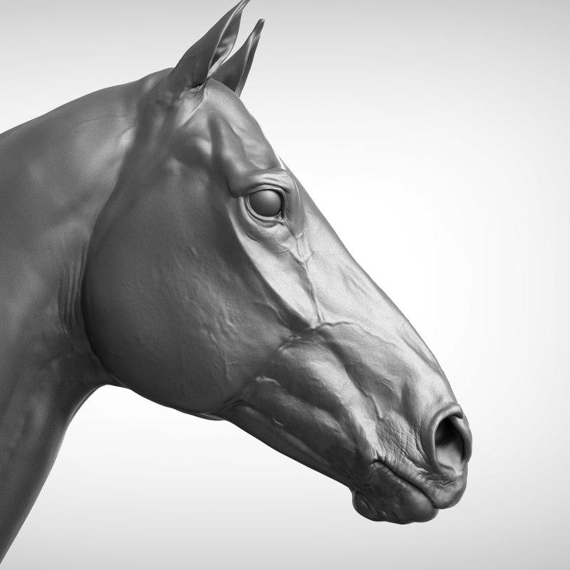 horse head v2 3D model