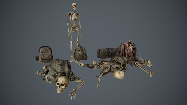 traveller skeletons bags 3D