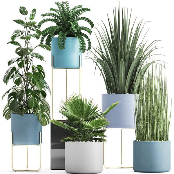 3D ornamental plants