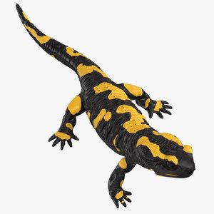 salamander rigged 3D