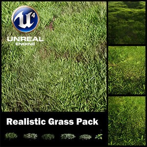 grass pack unreal engine 3D