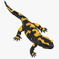 3D model salamander standing